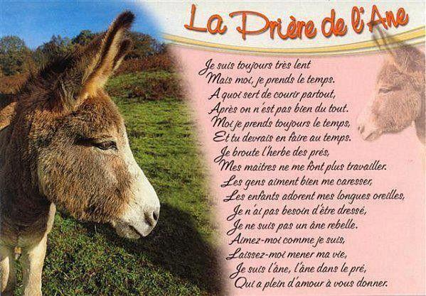 Image du Blog douceuretdetente.centerblog.net