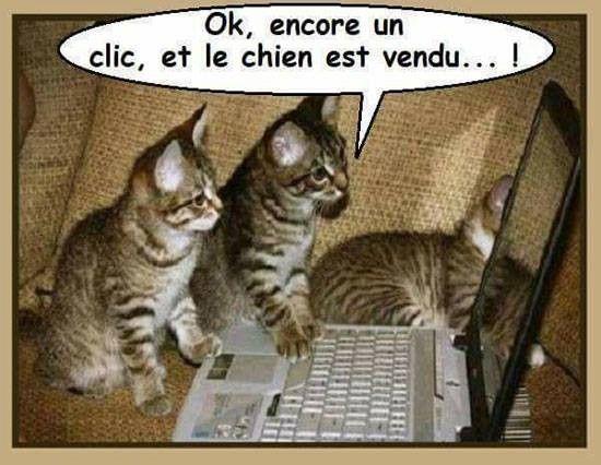 http://douceuretdetente.d.o.pic.centerblog.net/4f740d91.jpg
