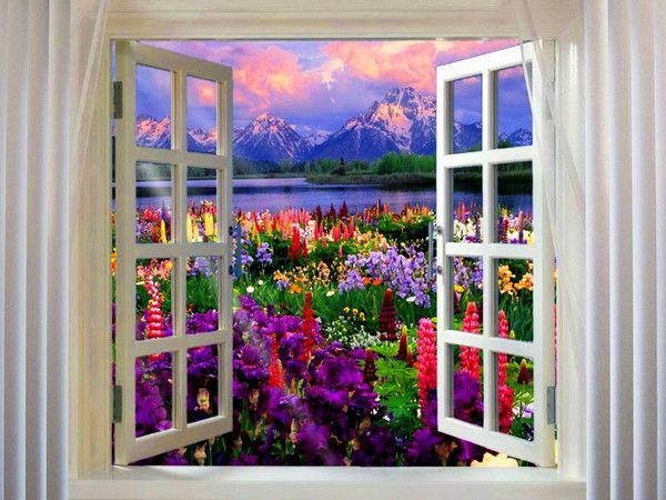http://douceuretdetente.d.o.pic.centerblog.net/4f90c3e7.jpg