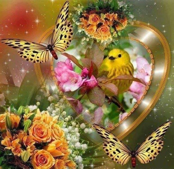 http://douceuretdetente.d.o.pic.centerblog.net/51edfa88.jpg