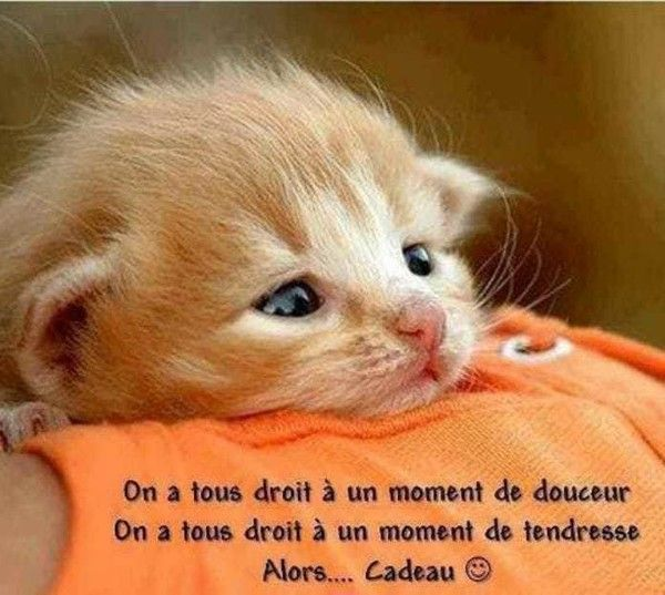 http://douceuretdetente.d.o.pic.centerblog.net/7534df4f.jpg
