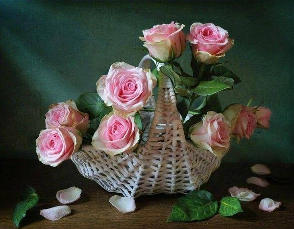 9697 Octobre 2014,corbeille de fleurs pour Arlette