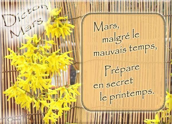 12 O45 Mars  2016 aurevoir Février , bonjour Mars