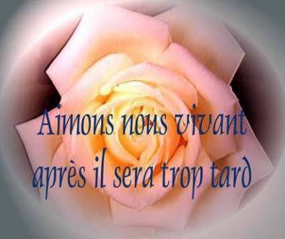 215           janvier2011    Les fleurs embellissent la vie