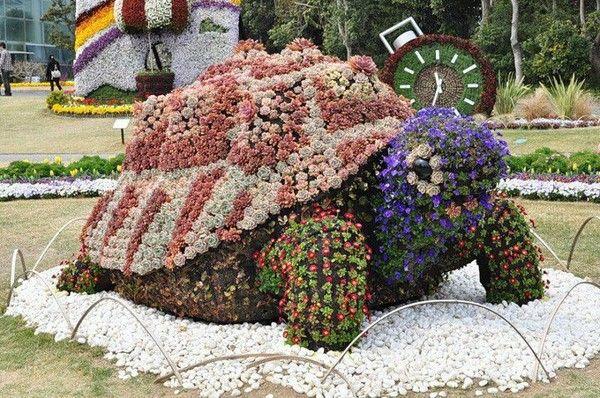 4015 Juin 2012 la tortue en fleurs