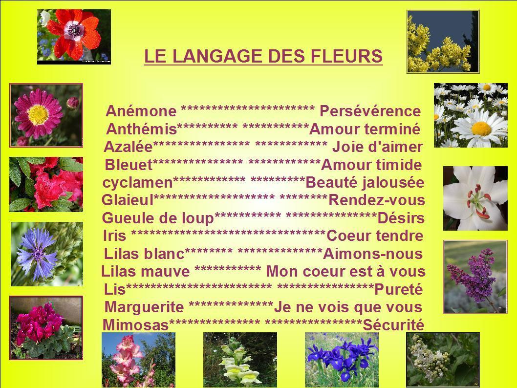 13 814 juillet 2017 le langage des fleurs for Langage des fleurs